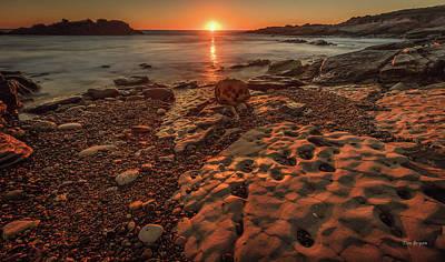 Photograph - Last Light, Point Lobos by Tim Bryan