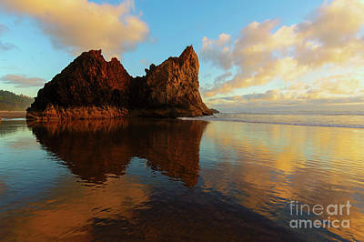 Photograph - Last Light Reflections by Mike Dawson