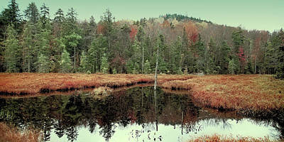 Print featuring the photograph Last Of Autumn On Fly Pond by David Patterson
