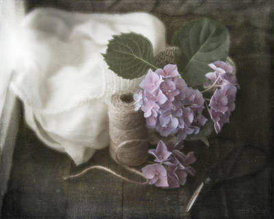 Photograph - Last Of The Hydrangeas 9793 by Teresa Wilson