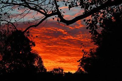 Photograph - Last September Dawn 2 by Kathryn Meyer