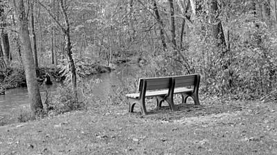 Photograph - Last Warm Days Of Autumn In Black And White by Kay Novy