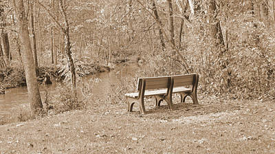 Photograph - Last Warm Days Of Autumn In Sepia by Kay Novy