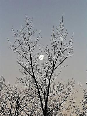 Photograph - Last Winter Moon by Deborah Moen