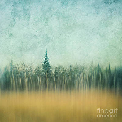 Last Year's Grass Art Print by Priska Wettstein