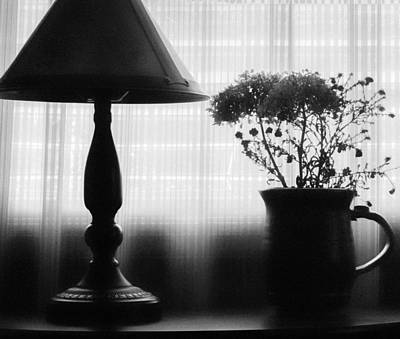 Photograph - Late Afternoon by Bonnie Bruno