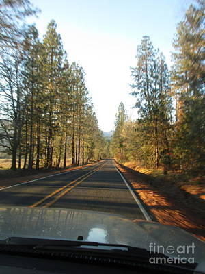 Photograph - Late Afternoon Drive by Marie Neder