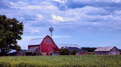 Photograph - Late Afternoon On The Farm by L O C