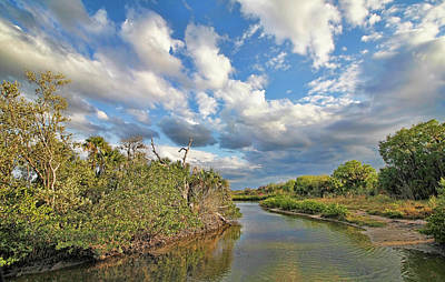 Photograph - Late Afternoon On The Marsh by HH Photography of Florida