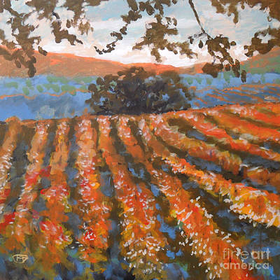 Late Afternoon Vineyard Art Print by Kip Decker