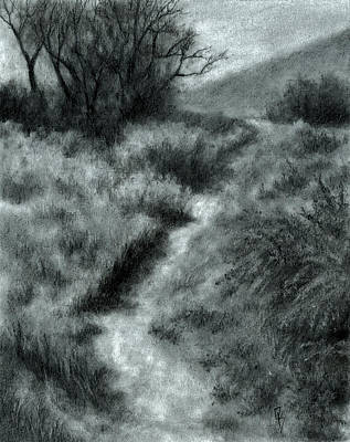 Drawing - Late Afternoon Walk by David King