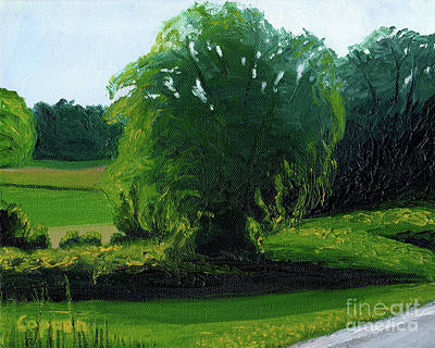 Painting - Late Afternoon Willow by Robert Coppen
