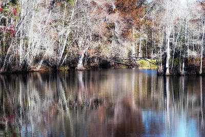 Photograph - Late Autumn Along The Waccamaw River by Van Sutherland