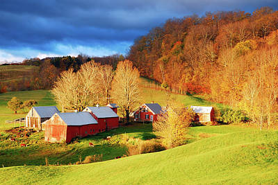 Photograph - Late Autumn On The Farm by James Kirkikis