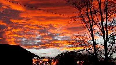 Photograph - Late Autumn Sunset by Deb Martin-Webster