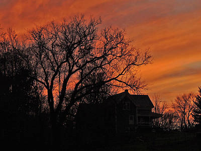 Photograph - Late Autumn Sunset by Nancy Griswold