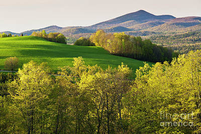Photograph - Late Day Spring Landscape by Alan L Graham