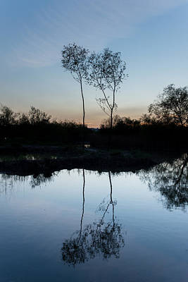Photograph - Late Evening Reflections II by Marco Oliveira