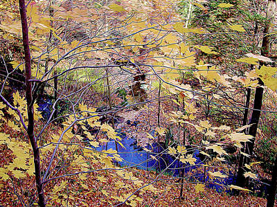 Photograph - Late Fall Creek by Linda Carruth