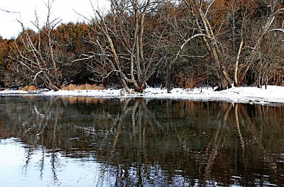 Photograph - Late Fall by Debbie Oppermann