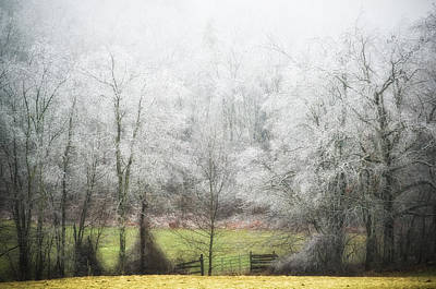 Late Fall Ice Storm Central Ma 2008 Art Print by Richard Danek