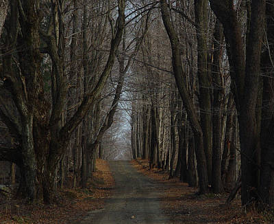 Cummington Photograph - Late Fall Lane by Rosemary Wessel