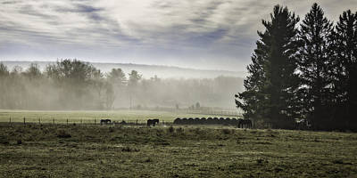 Photograph - Late Fall Morning In The Countryside by Eduard Moldoveanu