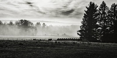 Photograph - Late Fall Morning In The Countryside Black And White by Eduard Moldoveanu