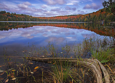 Photograph - Late Fall Reflections by John Vose