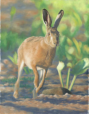 Painting - Late Light-hare by Clive Meredith