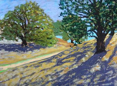 Print featuring the painting Late Light's Shadows by Gary Coleman