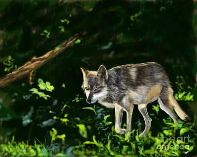 Late October Wolf Art Print