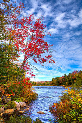 Of Autumn Photograph - Late September On The Moose River by David Patterson