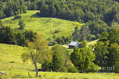 Photograph - Late Spring Countryside by Alan L Graham