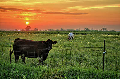 Photograph - Late Spring Sunrise 2 by Bonfire Photography