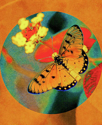 Photograph - Late Summer Butterfly by Susan Maxwell Schmidt