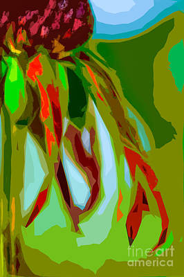 Photograph - Late Summer Coneflower Abstract by Michael Arend