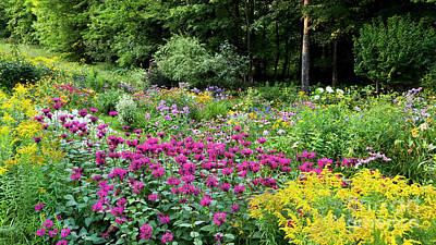 Photograph - Late Summer Garden by Alan L Graham