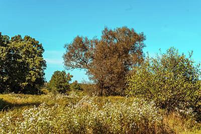 Photograph - Late Summer Landscape by Lilia D