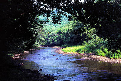Late Summer On Williams River Art Print by Thomas R Fletcher
