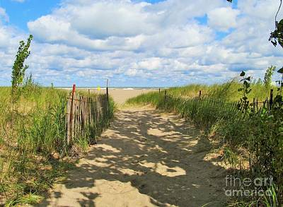 Photograph - Late Summer Stroll by Marcia Breznay