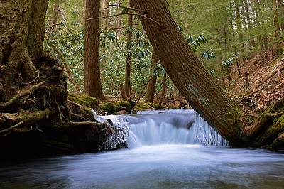 Photograph - Late Winter Cascade On Cherry Run Bald Eagle State Forest by Joel E Blyler