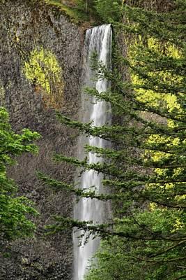 Photograph - Latourell Falls - 1 by Hany J
