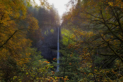 Latourell Falls In Autumn Art Print by David Gn