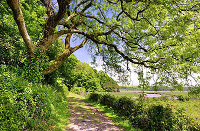 Photograph - Laugharne 1 by Phil Fitzsimmons