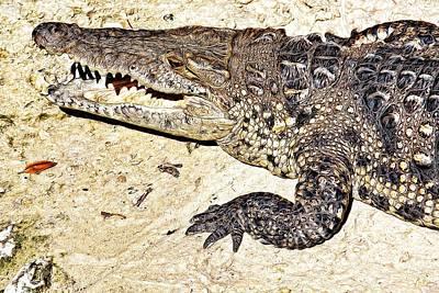 Laughing Alligator Art Print by Tatiana Travelways