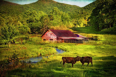 Photograph - Laughing Cows by Debra and Dave Vanderlaan