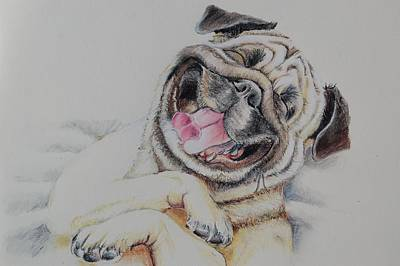 Pastel - Laughing Pug by Teresa Smith