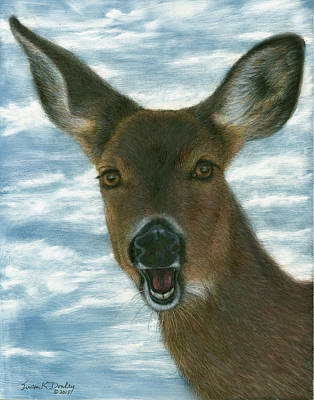 Painting - Laughing Whitetail by Susan Donley