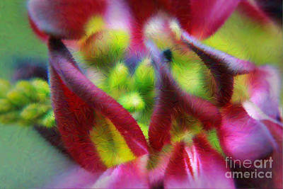 Photograph - Laughing Wistaria by Lori Mellen-Pagliaro